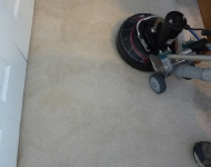 Boy's Room Carpet Cleaning