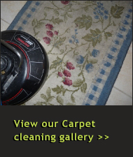 Carpet Cleaning, Carpet Cleaners, Carpet Steam Cleaners Photo Gallery