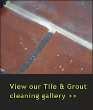 View Our Tile Cleaning & Grout Cleaning Gallery